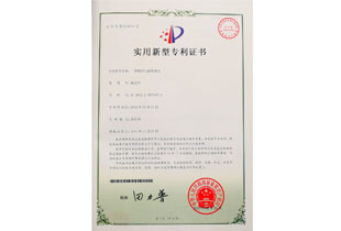Enhanced plug patent certificate